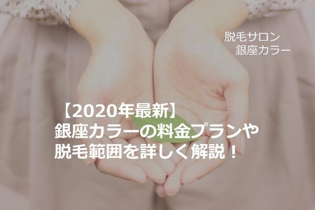 【2021年最新】銀座カラーの料金プランや脱毛範囲を詳しく解説!